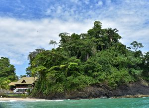 Einsame Insel im Karibischen Meer