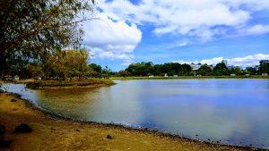 Der Parque La Sabana