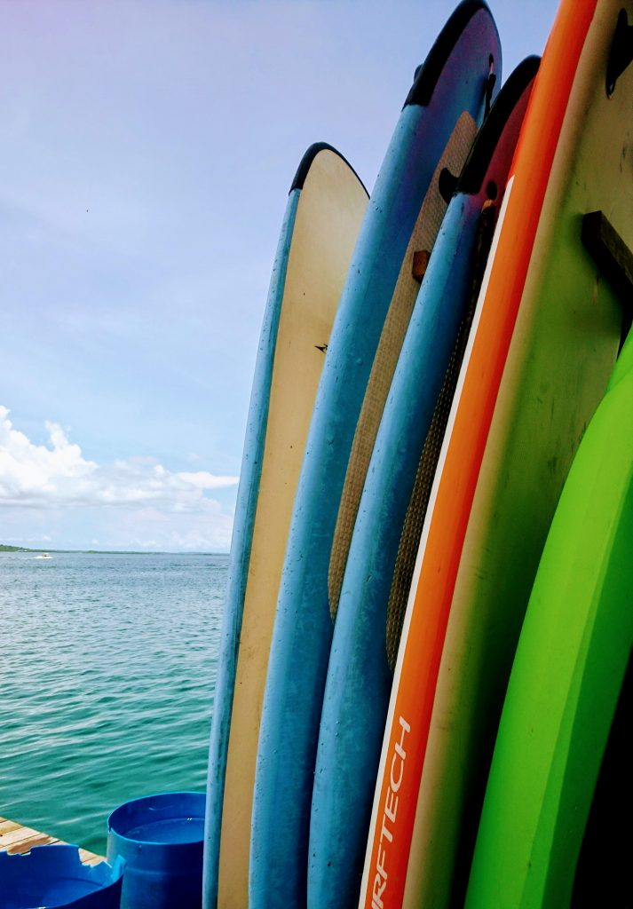 Surfkurs in Bocas del Toro: La Buga Surfboards