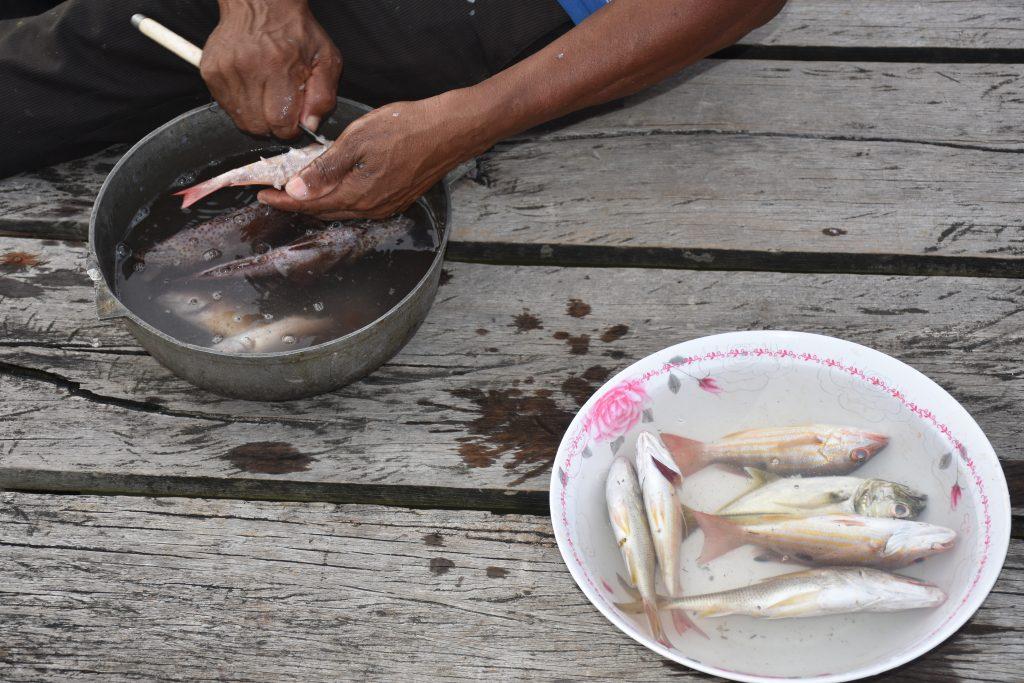 Hernando hilft beim Ausnehmen der Fische
