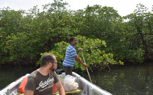 Ködersuche beim Fischen in Bocas del Toro