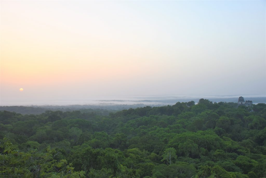 Sonnenaufgang Tikal