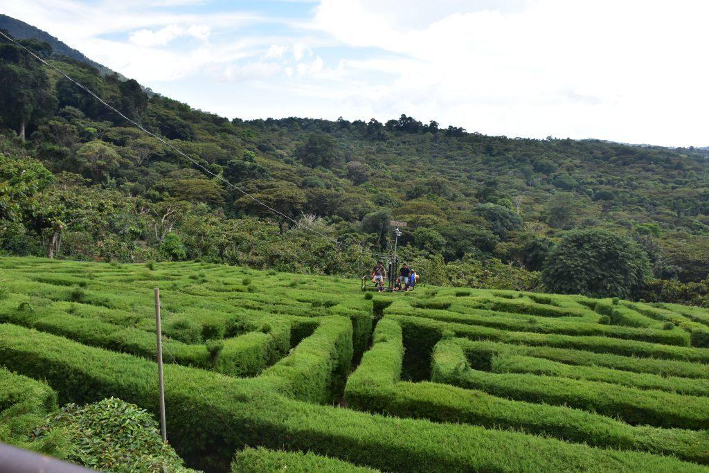 Labyrinth von oben