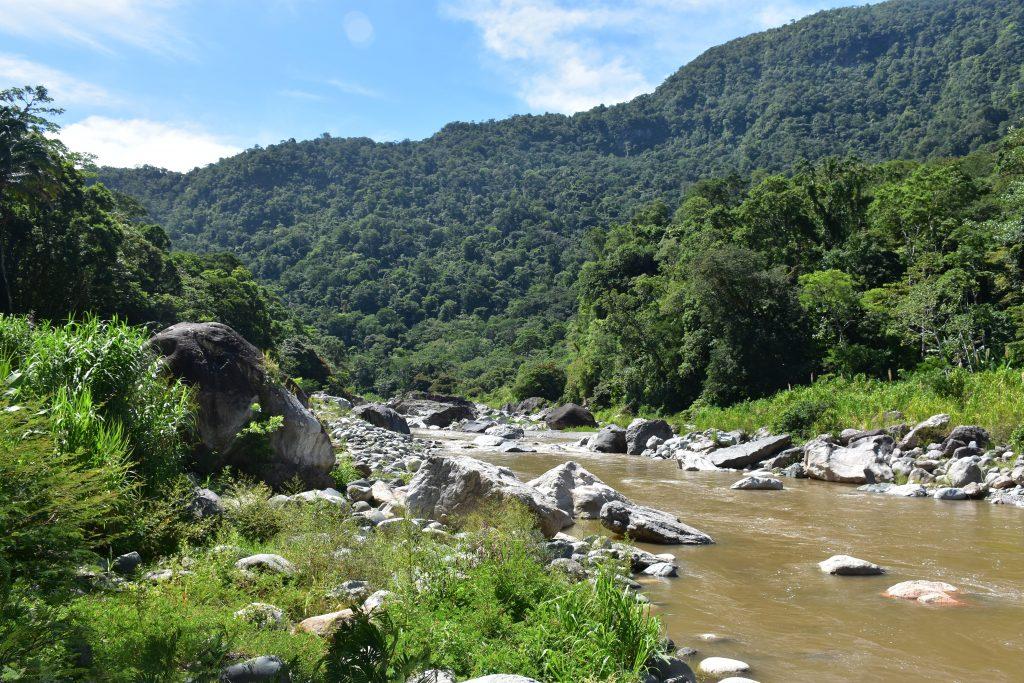 Fluss Pico Bonito