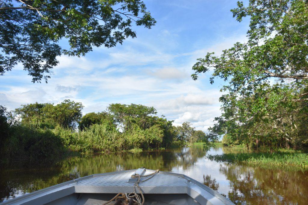 Pantanal Tour blauer Himmel