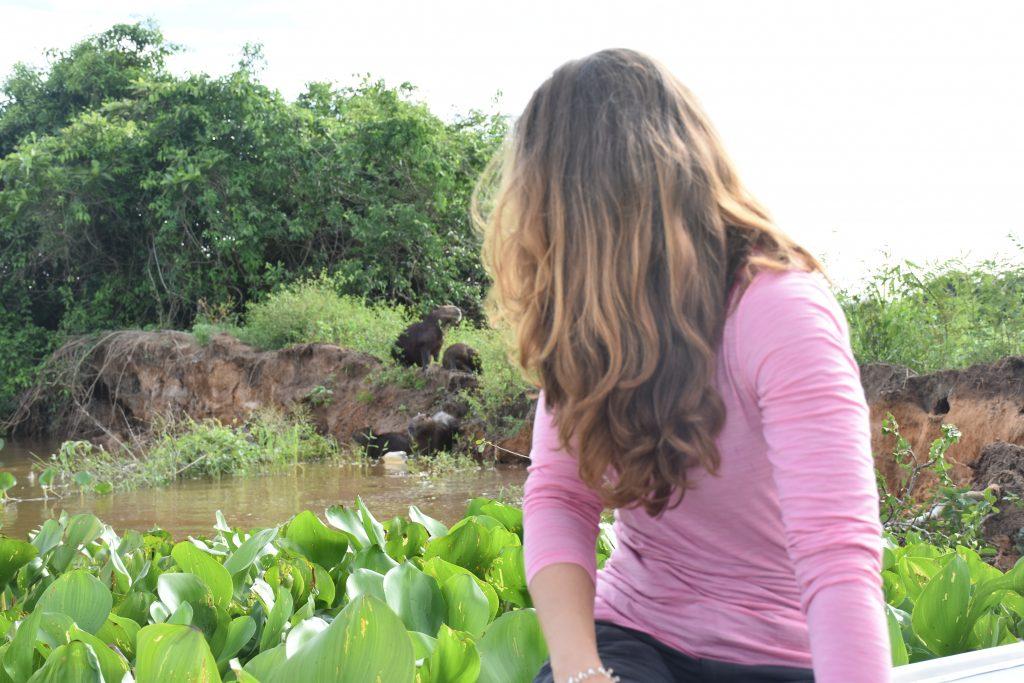 Wasserschweine Lisa