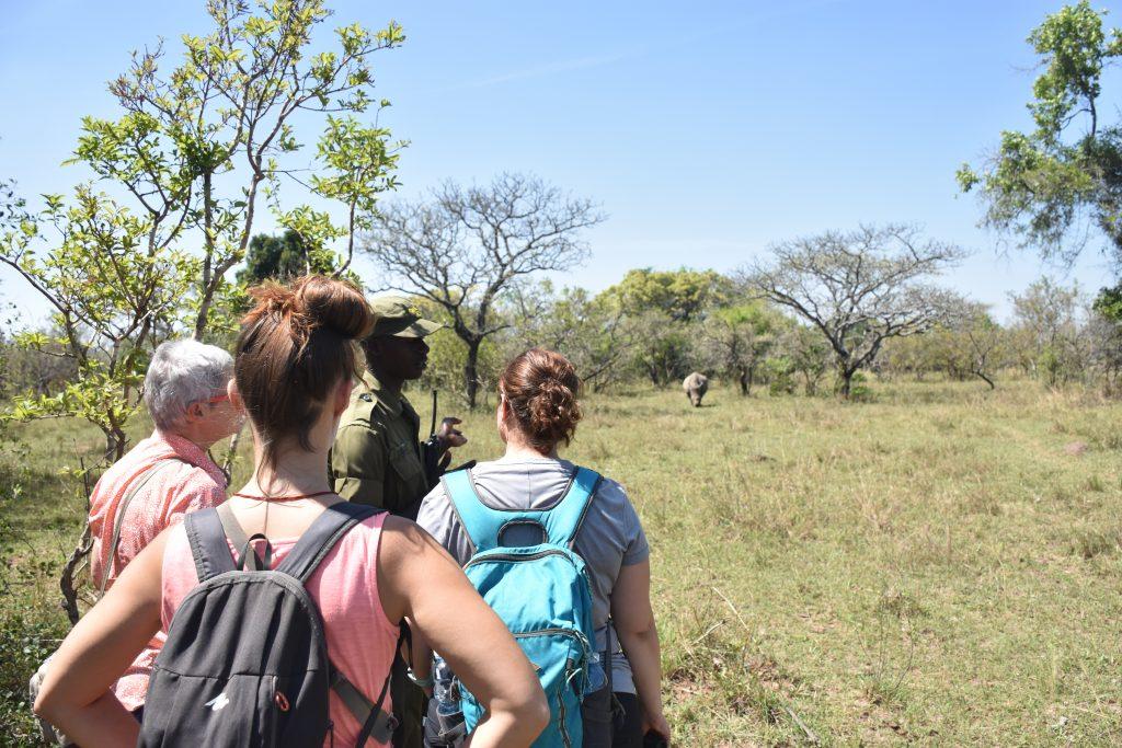 Annäherung Rhinos
