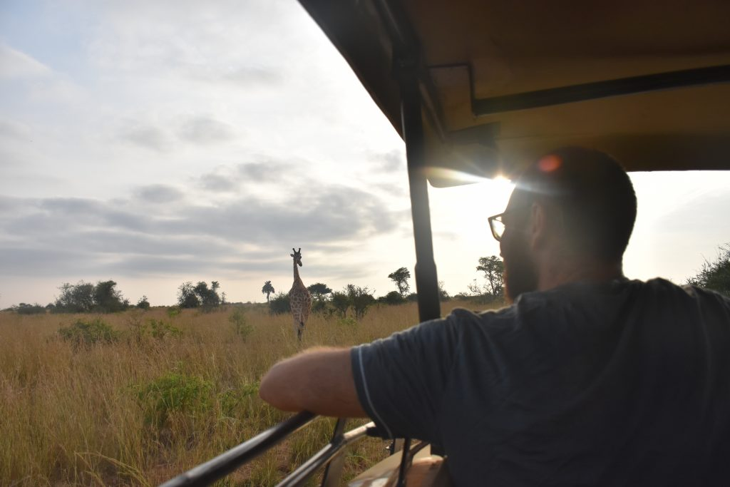 watching giraffe Murchison Falls National Park