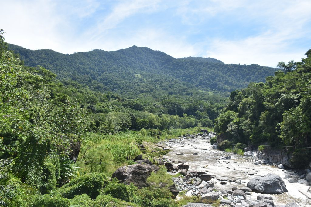 Fluss Brücke Pico Bonito