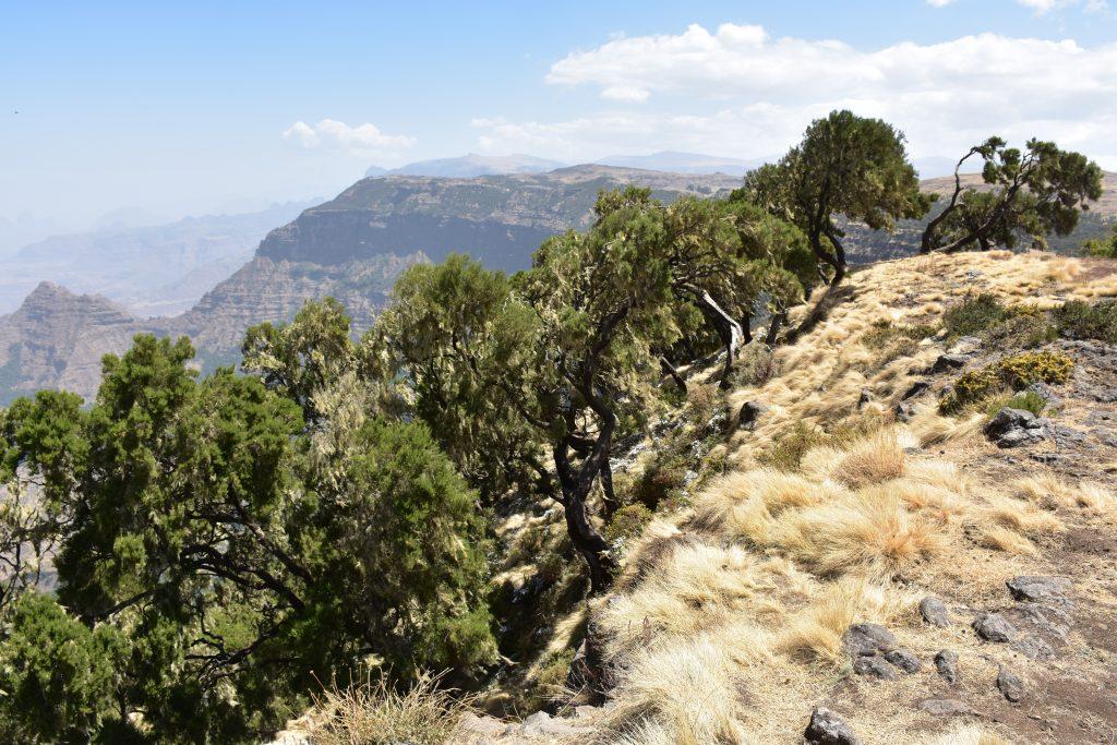 Landschaft Simien Mountains National Park