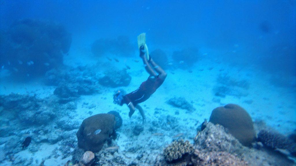 Schnorcheln mit Mantarochen Fiji