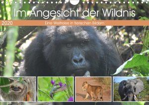 Calvendo Kalender Im Angsicht der Wildnis 2020